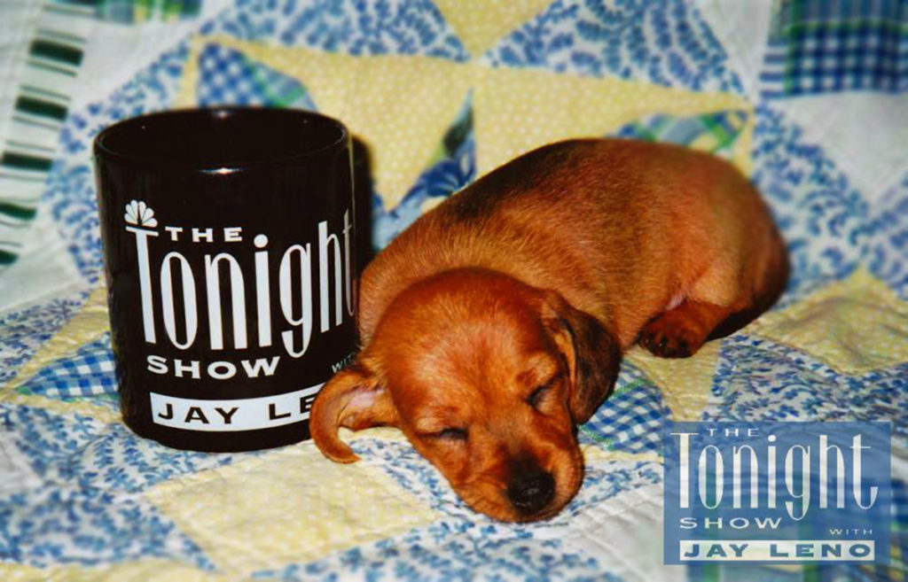 The Tonight Show with Sally